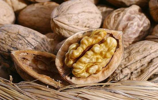 Клетчатка из грецкого ореха