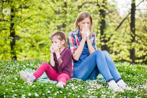 Сроки весенней аллергии на цветение в 2021 году. Как и чем лечить поллиноз